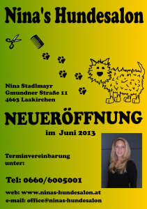 Flyer Ninas Hundesalon - Homepage